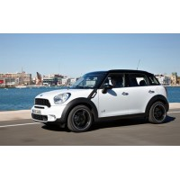 Tapis Mini Countryman